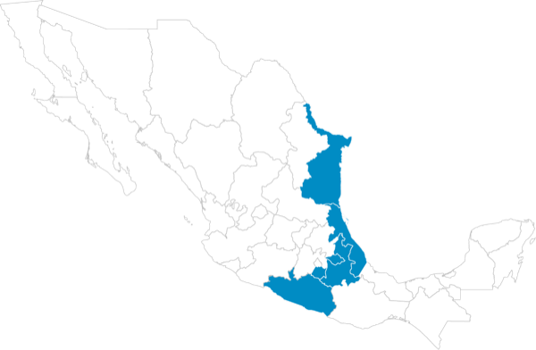 Golfo norte - Pacífico sur: Puebla, Tlaxcala, Morelos, Guerrero, Veracruz Norte y Tamaulipas